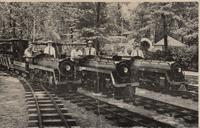 Miniature railway at Eden Springs, House of David, Benton Harbor, Michigan [front]