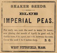 Shaker Seeds. Blue Imperial Peas. D.G. West Pittsfield, Mass.