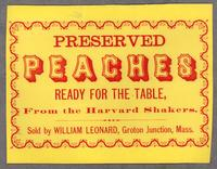 Preserved Peaches Ready for the Table, from the Harvard Shakers. Sold by William Leonard, Groton Junction, Mass.