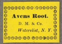 Avens Root