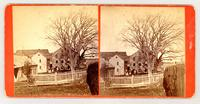 Elm trees, Sister's Shop & other buildings, Chh. Family [front]