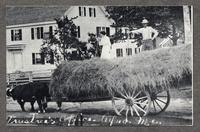 Trustee's Office - Alfred, Me. [pictured: Ida and Stephen [Goings?] on the hay]