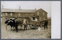 Ox team and ox cart in front of the Selzer Kitchen House in Homestead, ca 1912