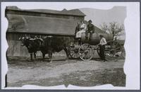 Tank wagon, with two women and a man seated on top and a man standing next to wagon which is hitched to a yoke of oxen